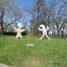 Nie tylko abakany – kilka słów o rzeźbach Magdaleny Abakanowicz