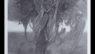 Zdzisław Beksiński. Malarz tajemnej formy egzystencji