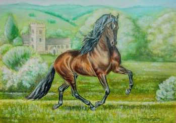 Gaviliano- Andalusian Stallion, Pferd Andalusischer Hengst - ART DOROTHEAH