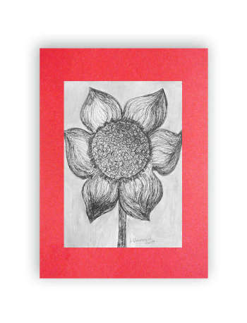 Black-and-white drawing with a flower - Anna Skowronek