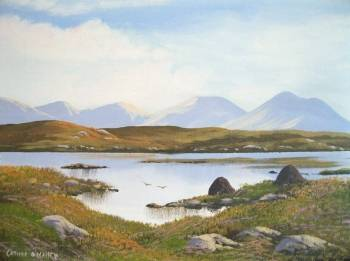 Roundstone bogland - Cathal O Malley