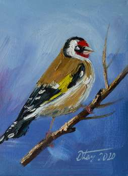 GOLDFINCH - Dorota Łaz