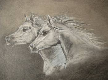 chevaux blancs - Emilia Lewandowska