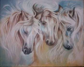 The wind blows away the horse's mane - Iwona Ostaszewska
