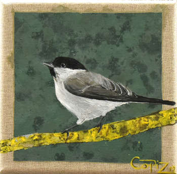 There is a bird: Poor Titmouse - Izabela Kopica