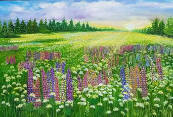 Wild meadow with lupins - Jadwiga Rudnicka
