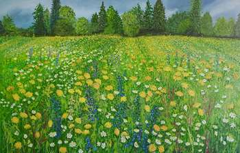Wild meadow with dandelions - Jadwiga Rudnicka