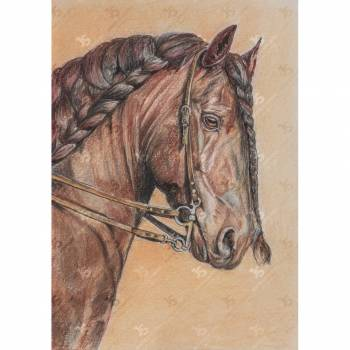Horse With Braid - Jowita Szmigiero