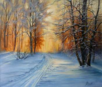 Forest, sun, winter - Lidia Olbrycht