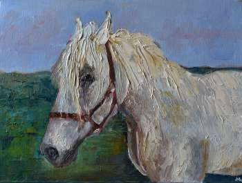 Animaux - Cheval 30 x 40 - Magdalena Walulik