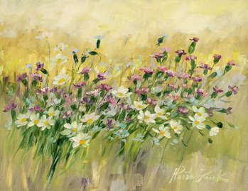 Summer meadow - Małgorzata Kruk