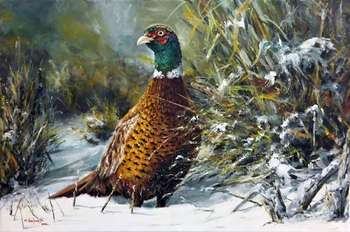 "In a winter robe ""Pheasant"" - Marek Szafrański"