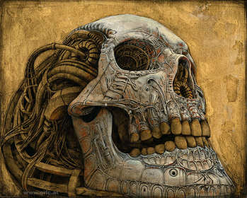 Modified Skull II - Peter Gric