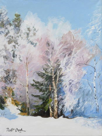 Winter in the forest - Piotr Olech