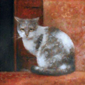 Kitten on a red background - Piotr Pilawa