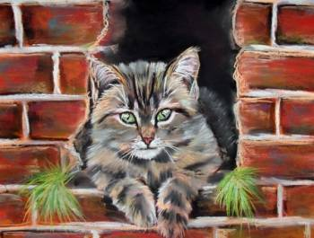 cat in the wall - Tomasz Armata