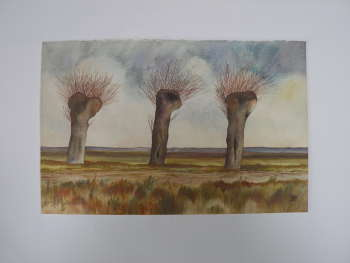 Three willows. - Wieńczysław Mazuś