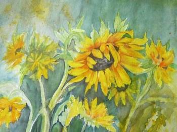 Sunflowers - Wieter Wieter